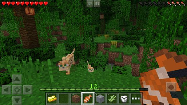 Hình ảnh trong Minecraft - game hay androi